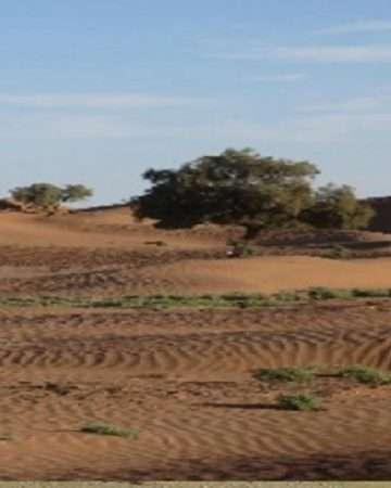 Trek Mhamid El Ghizlane Circuit 6 Jours
